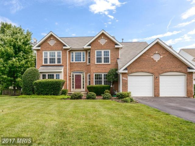 43990 Downington Court, Ashburn, VA 20147 (#LO9990642) :: Wicker Homes Group