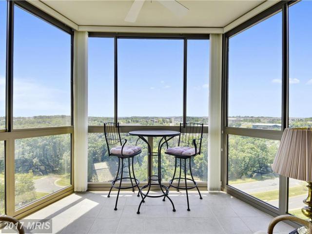 19375 Cypress Ridge Terrace #1102, Leesburg, VA 20176 (#LO9993298) :: LoCoMusings