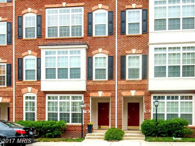 42537 Highgate Terrace, Ashburn, VA 20148 (#LO9995266) :: Pearson Smith Realty