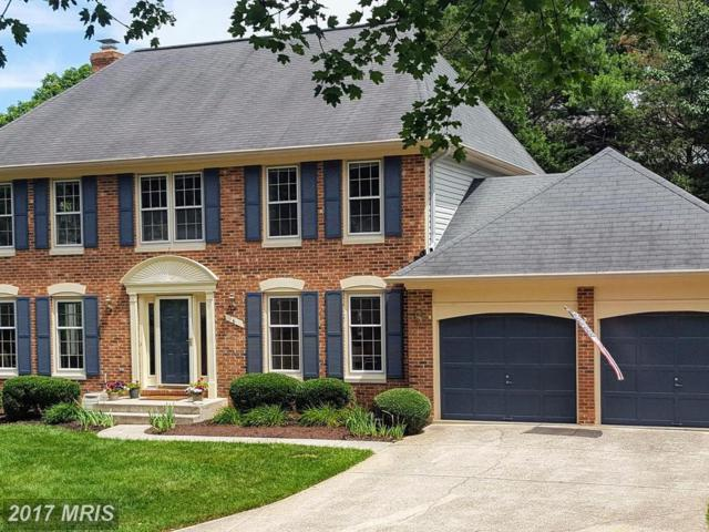 6 Griswold Court, Sterling, VA 20165 (#LO9996341) :: LoCoMusings