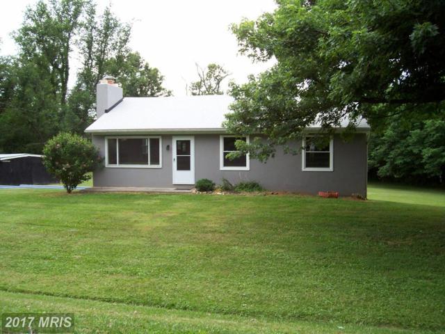 22345 St Louis Road, Middleburg, VA 20117 (#LO9997362) :: LoCoMusings