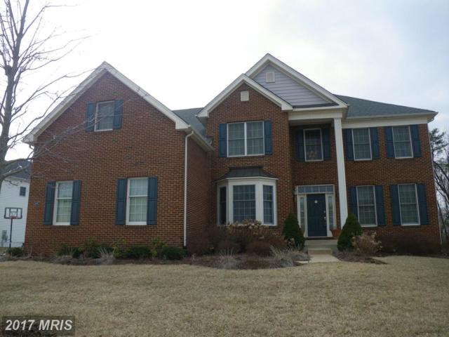 43487 Freeport Place, Sterling, VA 20166 (#LO9997917) :: Pearson Smith Realty