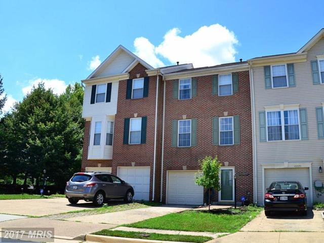 43227 Chestermill Terrace, Ashburn, VA 20147 (#LO9998478) :: Wicker Homes Group