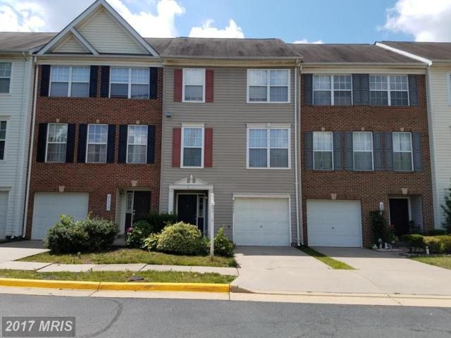 45537 Clear Spring Terrace, Sterling, VA 20165 (#LO9998937) :: Pearson Smith Realty