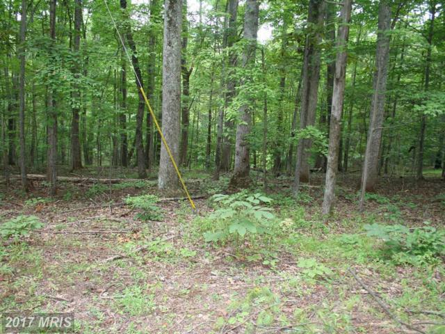White Oak Lakeview Drive N, Madison, VA 22727 (#MA10031366) :: Pearson Smith Realty