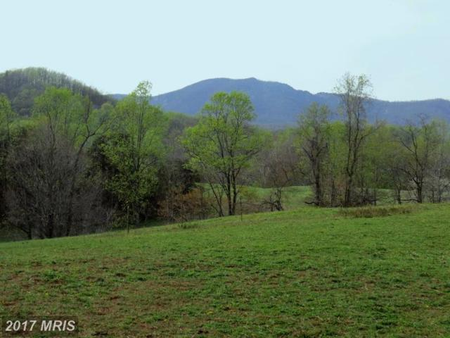 Ft Valley Road, Etlan, VA 22719 (#MA10031491) :: Pearson Smith Realty