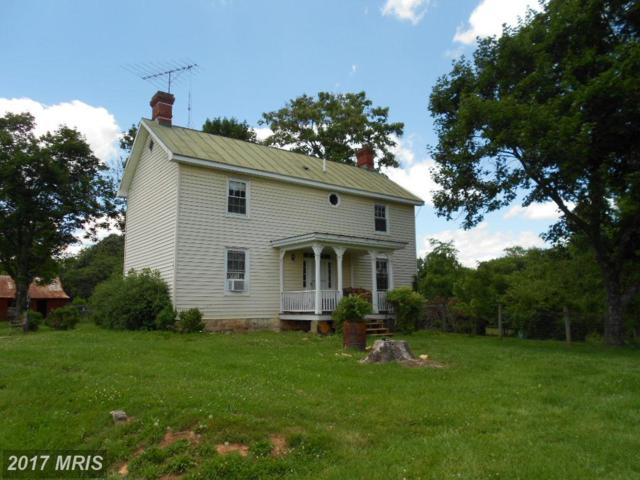 355 Gibbs Road, Madison, VA 22727 (#MA10052090) :: Pearson Smith Realty