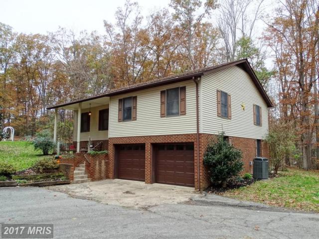 97 Ashlawn Drive, Madison, VA 22727 (#MA10106404) :: Pearson Smith Realty