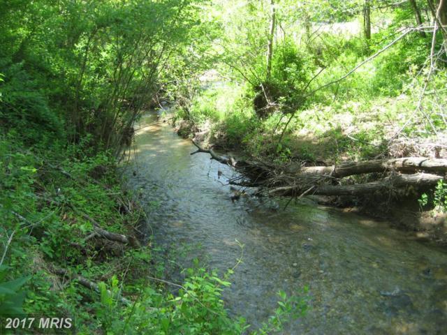 Rt 231 Ft Valley Road, Banco, VA 22711 (#MA10109937) :: Pearson Smith Realty