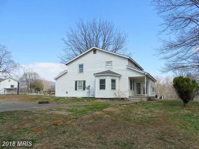 100 Horn Hollow Lane, Madison, VA 22727 (#MA10184737) :: SURE Sales Group