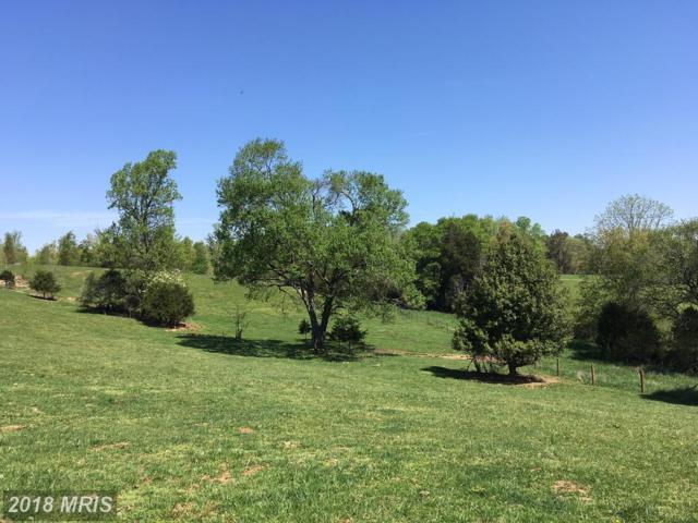 John Tucker Road, Aroda, VA 22709 (#MA10233583) :: RE/MAX Cornerstone Realty
