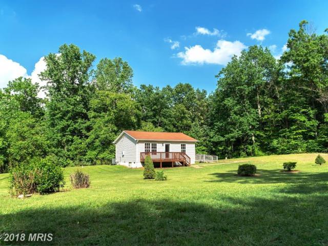 1310 Arrington Mountain Road, Haywood, VA 22722 (#MA10246719) :: RE/MAX Cornerstone Realty