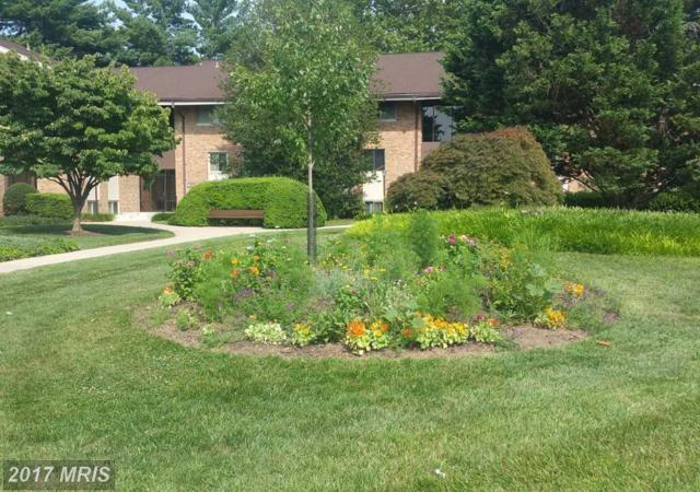 18611 Walkers Choice Road #6, Montgomery Village, MD 20886 (#MC10003440) :: Pearson Smith Realty