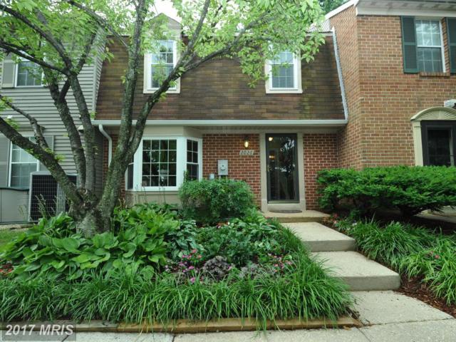 2026 Flowering Tree Terrace, Silver Spring, MD 20902 (#MC10004039) :: LoCoMusings