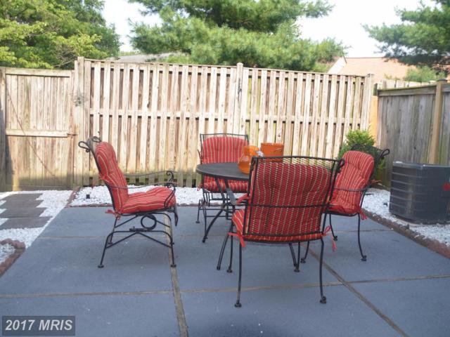 502 Azalea Drive #40, Rockville, MD 20850 (#MC10011073) :: Dart Homes
