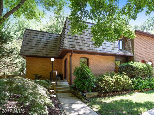 10883 Deborah Drive, Potomac, MD 20854 (#MC10016428) :: Pearson Smith Realty