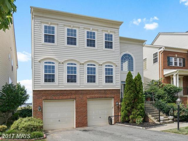 23224 Murdock Ridge Way, Clarksburg, MD 20871 (#MC10017712) :: Pearson Smith Realty