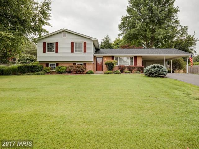 12806 Tern Drive, North Potomac, MD 20878 (#MC10019807) :: Pearson Smith Realty
