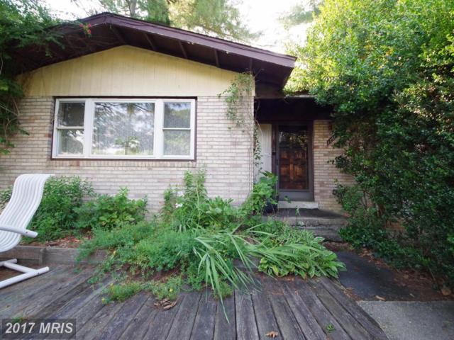 13614 Loree Lane, Rockville, MD 20853 (#MC10024515) :: Pearson Smith Realty