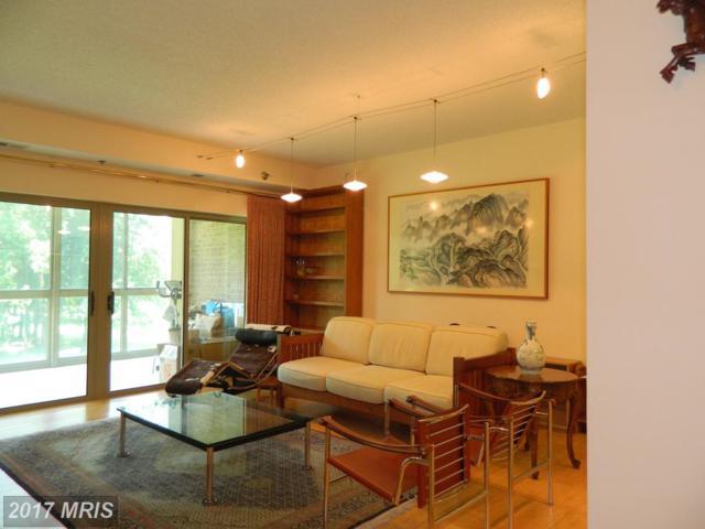 3005 Leisure World Boulevard #319, Silver Spring, MD 20906 (#MC10030212) :: Pearson Smith Realty