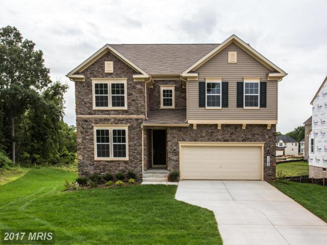 1195 Rainbow Drive, Silver Spring, MD 20905 (#MC10031372) :: Pearson Smith Realty