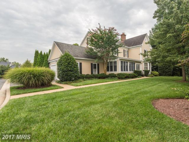 10002 Gable Manor Court, Potomac, MD 20854 (#MC10032055) :: Dart Homes