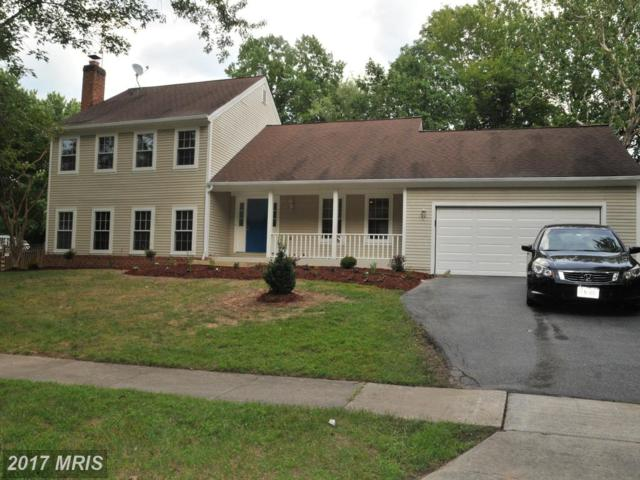 2402 Dressler Lane, Silver Spring, MD 20906 (#MC10033215) :: The Sebeck Team of RE/MAX Preferred