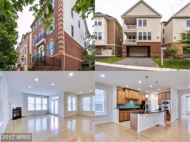 310 Liriope Place, Gaithersburg, MD 20878 (#MC10033687) :: Pearson Smith Realty