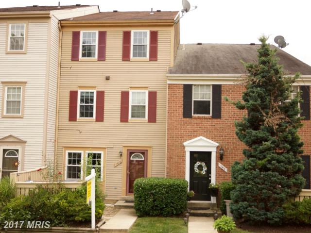 11412 Appledowre Way #63, Germantown, MD 20876 (#MC10033975) :: Dart Homes