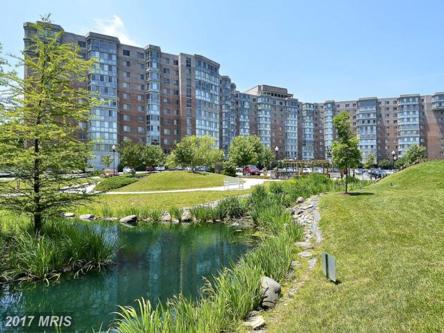 3100 Leisure World Boulevard #1003, Silver Spring, MD 20906 (#MC10038677) :: Pearson Smith Realty