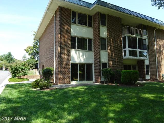 3378 Chiswick Court 52-1H, Silver Spring, MD 20906 (#MC10042029) :: Pearson Smith Realty