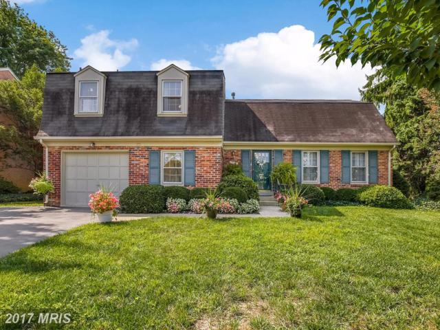 19116 Pike Creek Place N, Gaithersburg, MD 20886 (#MC10049659) :: Pearson Smith Realty