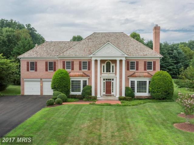 9420 Crimson Leaf Terrace, Potomac, MD 20854 (#MC10050240) :: Pearson Smith Realty