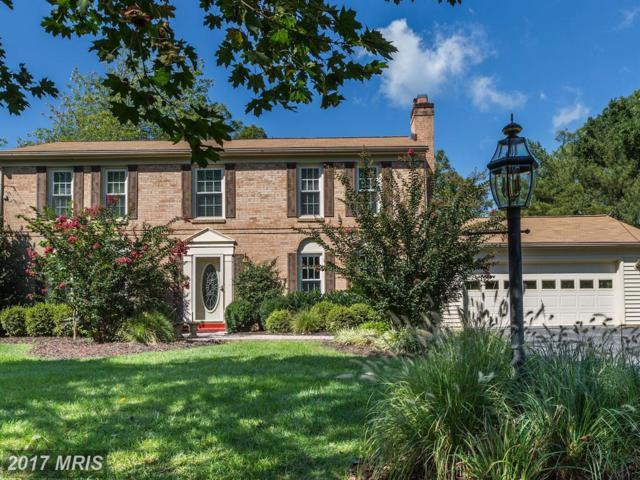 14800 Pebblestone Drive, Silver Spring, MD 20905 (#MC10051348) :: Pearson Smith Realty