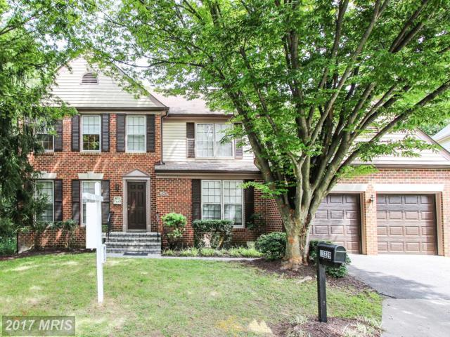 13229 Osterport Drive, Silver Spring, MD 20906 (#MC10051363) :: Pearson Smith Realty