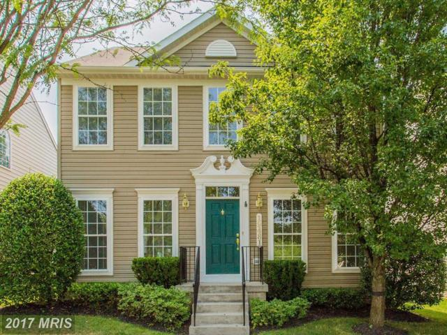 19481 Rayfield Drive, Germantown, MD 20874 (#MC10052768) :: Pearson Smith Realty