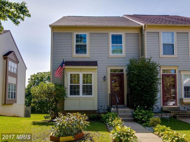 3685 Childress Terrace, Burtonsville, MD 20866 (#MC10055913) :: Pearson Smith Realty