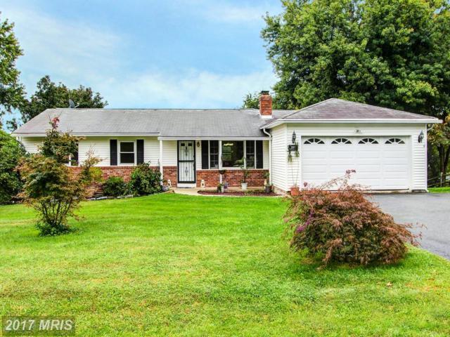 12404 Fountain Drive, Clarksburg, MD 20871 (#MC10056459) :: Dart Homes
