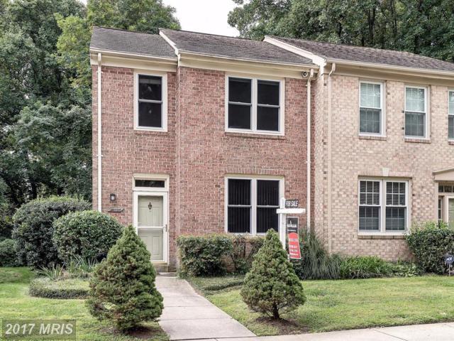 10720 Pine Haven Terrace, Rockville, MD 20852 (#MC10057005) :: LoCoMusings