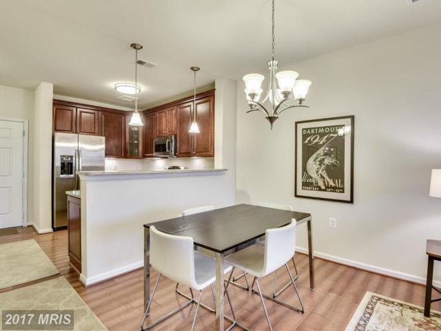 3850 Clara Downey Avenue #44, Silver Spring, MD 20906 (#MC10057049) :: Pearson Smith Realty