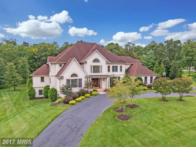 12632 Greenbriar Road, Potomac, MD 20854 (#MC10058301) :: Pearson Smith Realty