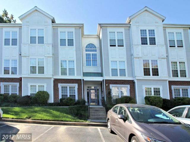9701 Leatherfern Terrace #101, Gaithersburg, MD 20886 (#MC10060002) :: Dart Homes