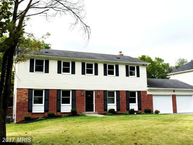 405 Southview Avenue, Silver Spring, MD 20905 (#MC10060683) :: Dart Homes