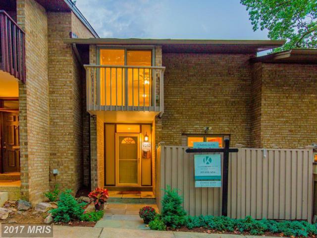 9252 Three Oaks Drive, Silver Spring, MD 20901 (#MC10060732) :: Dart Homes
