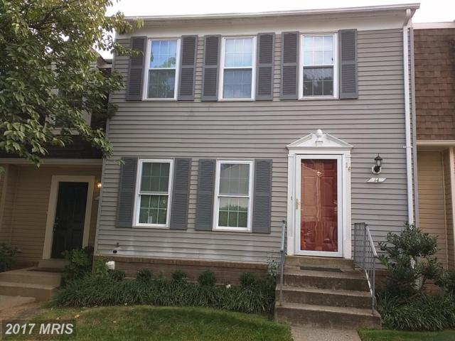 14 Cherry Bend Court, Germantown, MD 20874 (#MC10064297) :: The Maryland Group of Long & Foster