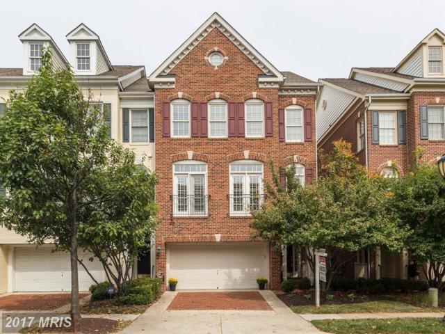 207 Oak Knoll Terrace, Rockville, MD 20850 (#MC10064403) :: LoCoMusings