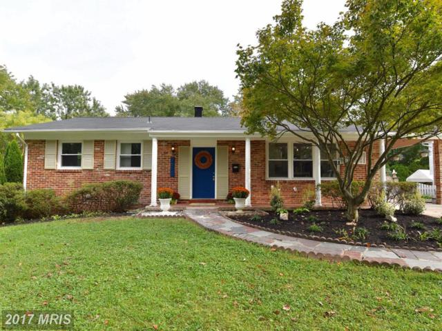 2610 Woodedge Road, Silver Spring, MD 20906 (#MC10064433) :: Circadian Realty Group