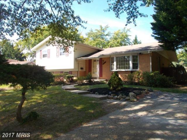 14218 Dennington Place, Rockville, MD 20853 (#MC10069645) :: LoCoMusings