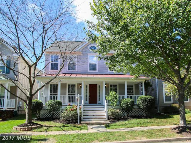 18904 Porterfield Way, Germantown, MD 20874 (#MC10073039) :: Dart Homes