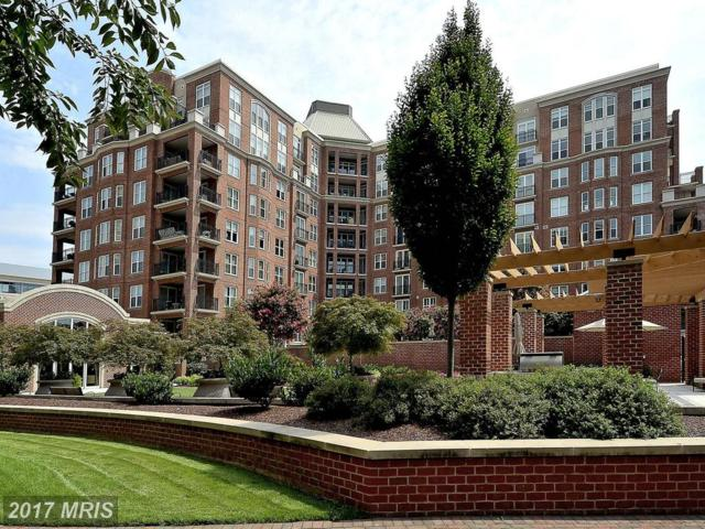 12500 Park Potomac Avenue 106S, Potomac, MD 20854 (#MC10073144) :: LoCoMusings